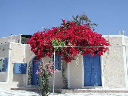 mediterranean  Greek House
