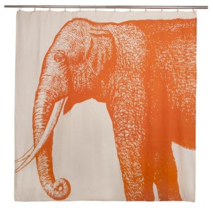 Asian Shower Curtains by Beth Connolly