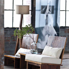 Eclectic Living Room Chairs by Zin Home