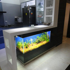 Asian Kitchen by design n solution