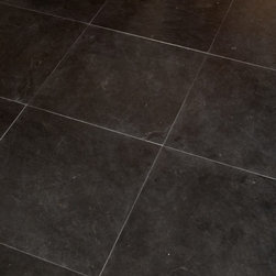 "Flooring - ANN SACKS Eclipse 16"" x 16"" marble field in honed finish"