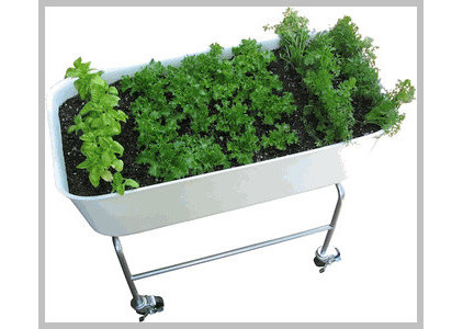 Traditional Outdoor Planters by cleanairgardening.com