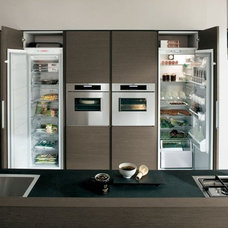 Modern Refrigerators And Freezers by Euro Interior California