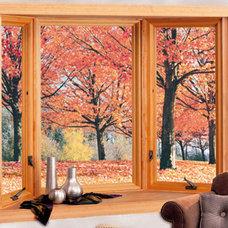 Modern Windows by Renewal by Andersen