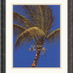 Amanti Art - Erin Framed Print by Robert Charles Dunahay - Bring the tropics into your home with this striking palm tree by artist Robert Charles Dunahay.