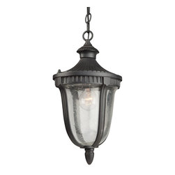 Artcraft Lighting - Artcraft Lighting Palermo Traditional Outdoor Hanging Light X-RG5208CA - Outdoor chain pendant from Palermo family with seeded clear glassware, in rich graphite finish