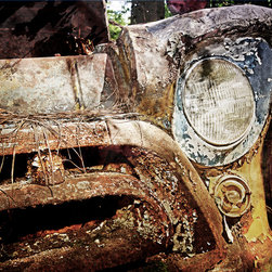 Fine Art Decor_Junk Cars - Color, photograph. Custom sizes and printed materials. Sizes range from desktop to wall paper. Please contact for details.