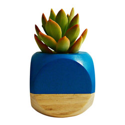 """Geometric Succulent Cactus Planter // Teal + Wood Colorblock - This hand painted planter is perfect for succulent cuttings, small cacti or other mini soil based plants. The 2 1/2"""" wood planter is great for a desk, windowsill or tabletop accent. The planting hole is approximately 1 1/4"""" deep by 1 1/2"""" wide. Also, great for air plants."""