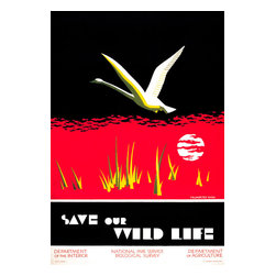 Save our Wildlife Print - WPA Poster created by Dorothy Waugh between 1930 and 1940. This color silkscreen poster was created to protect the Trumpeter Swan. Created for the Department of the Interior, National Park Service. Department of Agriculture, Biological Survey.