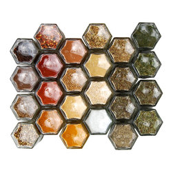 Gneiss Spice - Magnetic Spice Rack With 24 Organic Spices, Silver Lids - Standard Spice Kit Includes: