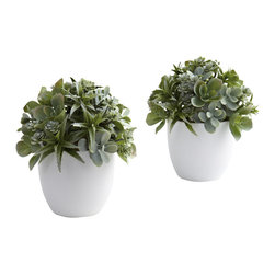 Nearly Natural - Mixed Succulent w/White Planter (Set of 2) - Succulents are known the world over for their pretty shapes and varied textures. This arrangement really brings those qualities out front and center. The leafy greens explode forth from the included white planter, ensuring you never see the same shape twice. best of all, this is a set of two, so your decorating options double. Ideal for any home decor, or office reception area. Makes a fine gift, too.