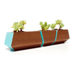 Revolution Design House - Boxcar Set Walnut and Blue - Walnut Boxcar succulent planter set with a clear finish and a pop of Robin Egg blue accents. Nest the set of planters together along a window sill or as a centerpiece on a table or desk.