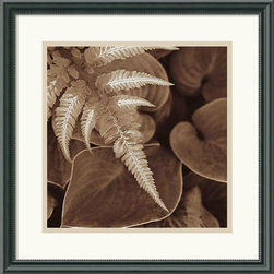 Amanti Art - Painted Ferns I Framed Print by Rebecca Swanson - Sophisticated, rich, modern; celebrate the form and grace of natural structure in this beautiful photographic study by artist Rebecca Swanson.