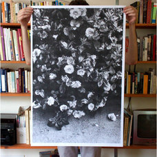 Contemporary Prints And Posters by Debbie Carlos