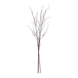 "Silver Nest - Red Twig Dogwood Branch- 45""h - We thought these branches were too cool not to share with you, but you do have to buy them in a bunch of 8"