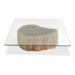 Rotsen Furniture - Salvaged Hollow Trunk Coffee Table - Square Glass Top -