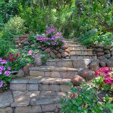 Landscaping/Yard/Garden