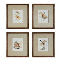 Sterling Industries - Decorative Wall Art, Dragonflies, Set Of 4 - Decorative Wall Art, Dragonflies, Set of 4
