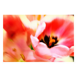 Uplifted, Limited Edition, Photograph - Flowers represent new hope and life. This vibrant photograph of tulips, by Jacquelyn Sloane Siklos, brings energy and fervor to your room decor. The pinks, reds and oranges are stimulating and add a pop of color to a muted palette.