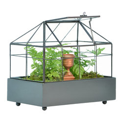 H Potter - H Potter Terrarium for Plants - Here's a tiny garden that will hold hours of discovery for you and your family, but you won't want to keep it secret for long. Made of dark metal and glass, it features a tilting vent, a dark gray base with bun feet, and a plastic liner to keep everything waterproof.