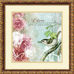 Amanti Art - Meringue 'Tiffany Nature I' Framed Art Print 18 x 18-inch - The mix of technical Latin and romantic French, old woodcut illustration and new floral art make this charming piece by Meringue an effervescent combination as delicate and fresh as springtime.
