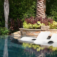 Contemporary Swimming Pools And Spas by PatioGate