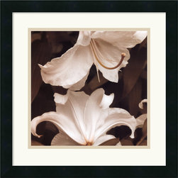 Amanti Art - White Lilies Framed Print by Rebecca Swanson - Add the luxury of these rich tones of delicate floral forms to your environment.  Rebecca Swanson captures the natural beauty of her botanical subjects in this stunning photograph.