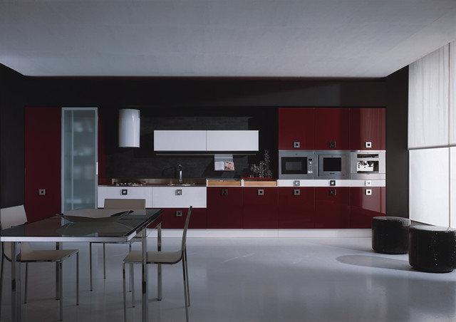 Modern Kitchen Cabinets by European Cabinets & Design Studios
