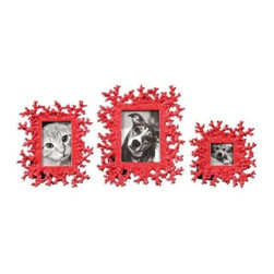 Uttermost - Uttermost Coral Photo Frames in Bright Red (Set of 3) - These photo frames feature a dynamic bright red finish.