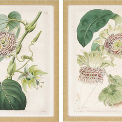Paragon Decor - Antique Flowers Set of 2 Artwork - Traditionally styled florals are framed in a small gold ribbed frame.