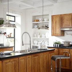 Danze Parma Single Handle Pre-Rinse Kitchen Faucet -