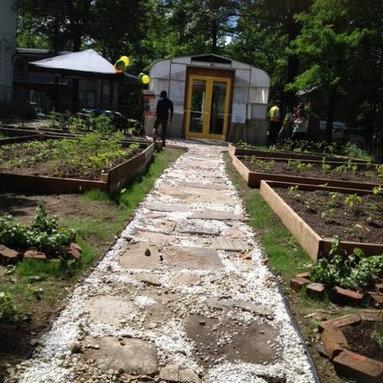 Ivy St. Community Garden Project -