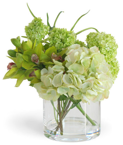 Contemporary Plants Green Cymbidium Orchid and Hydrangea Arrangement