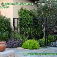 Mediterranean Landscape by CHIP-N-DALE'S CUSTOM LANDSCAPING