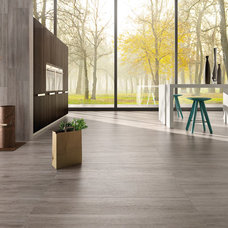 Contemporary Wall And Floor Tile by Fiandre by Eurowest