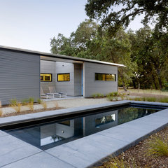 modern pool by Schwartz and Architecture