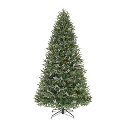Balsam Hill - 9' BH Fraser Fir Narrow Artificial Christmas Tree - Clear - Our 9-foot BH Fraser Fir Narrow Artificial Christmas Tree � Clear Lights captures the beauty and essence of the famed Abies balsamea. With its combination of classic needles and our signature True Needle™ foliage, this stunning artificial Christmas tree exhibits 5,439 tips of dark green and grayish green botanicals reminiscent of the verdant and silvery white appearance of its real-life inspiration. Featuring an elegantly narrow profile and 15 layers of hinged branches, our prelit Christmas tree has 1,050 handstrung clear lights for a resplendent and jubilant glow. Our tree also includes a metal stand, a female tree topper cord, a foot pedal, two pairs of gloves, and two tree bags, making setup and storage a breeze. Bring the splendid spirit of the yuletide season into your home with our Fraser Fir Narrow prelit artificial Christmas tree from Balsam Hill.Balsam Hill's mission is to create the world's most beautiful and realistic artificial Christmas trees. We are committed to providing our customers with a picture-perfect holiday. With options like remote-controlled pre-strung lights, our luxurious trees will let you sit back and enjoy Christmas to the fullest, this year and for years to come. Our trees are designed using branches from real trees, and our exclusive True Needle™ technology creates the most realistic looking and feeling branch tips. You and your guests may not believe that your gorgeous Balsam Hill Christmas tree is artificial. Balsam Hill's trees have won awards for their realism and have been featured in movies, television shows, and celebrity homes. Our wide range of styles and sizes ensures you will be able to find a tree that fits perfectly in your home. We also have a range of beautiful wreaths and garlands to put the finishing touches on your home this holiday season.