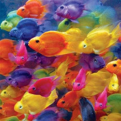 Schooled in Color Puzzle - 500 Piece Jigsaw PuzzleOne fish, two fish, red fish... Uh-oh, there are too many colors to count! Don't let this fish-filled jigsaw puzzle school you. Jump right in with this new Springbok puzzle!