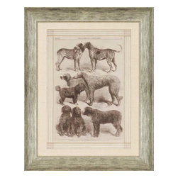 Paragon - International Dog Show II - Framed Art - Each product is custom made upon order so there might be small variations from the picture displayed. No two pieces are exactly alike.