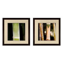 Paragon Art - Paragon Bamboo ,Set of 2 - Artwork - Bamboo ,Set of 2               ,  Paragon Artist is Pinsard , Paragon has some of the finest designers in the home accessory industry. From industry veterans with an intimate knowledge of design, to new talent with an eye for the cutting edge, Paragon is poised to elevate wall decor to a new level of style.