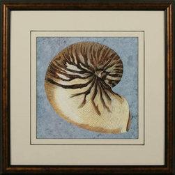 Stonewashed Nautilus Shell Framed Print | - Double Mat - Beautiful nautilus shell on soft blue background.  Lovely frame.
