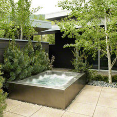 Contemporary Swimming Pools And Spas by diamondspas.com
