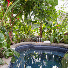 Tropical Pool by Julie Mannell Photography