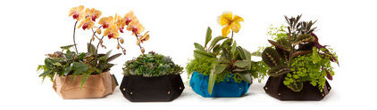 contemporary indoor pots and planters by A+R