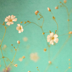 Murals Your Way - Lovely Wall Art - A scattering of tiny white blossoms against an aqua background creates a wall mural delicate enough for a nursery yet with elegance appropriate for
