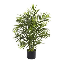 "2.5' Areca Palm UV Resistant (Indoor/Outdoor) - The beach is anywhere you want it to be with this amazing little Areca Palm Tree. Standing thirty inches in height, it features several stout trunks, and more than 325 leaves, bringing a definitive tropical feel to your home or office. Plus, it's fully UV resistant, so you can keep it inside, or bring it out to your patio, garden, deck, or anywhere else a little ""tropical vibe"" is called for. Makes a fine gift as well. Height= 2.5 Ft. x Width= 24 In. x Depth= 24 In."