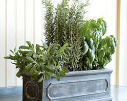Herb Window Box - I like the color, design and materials used for this planter. Because it's not 100% terra cotta it will  be lighter and more durable - two good qualities for window boxes. Hand molded of Fibreclay™, a mix of crushed terracotta and fiberglass resin.