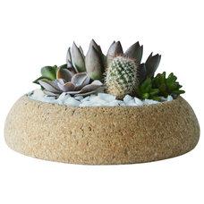 Contemporary Indoor Pots And Planters by Melanie Abrantes Designs