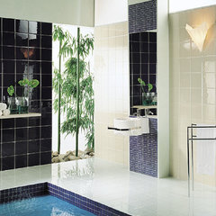 contemporary bathroom tile by Royal Stone & Tile