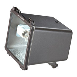 Eurofase Lighting - Eurofase Lighting 23257 Architectural Flood Light - Practical and sturdy, this flood light is a great choice for your needs. Reward yourself with this stable flood light featuring incandescent or fluorescent bulbs.Features: